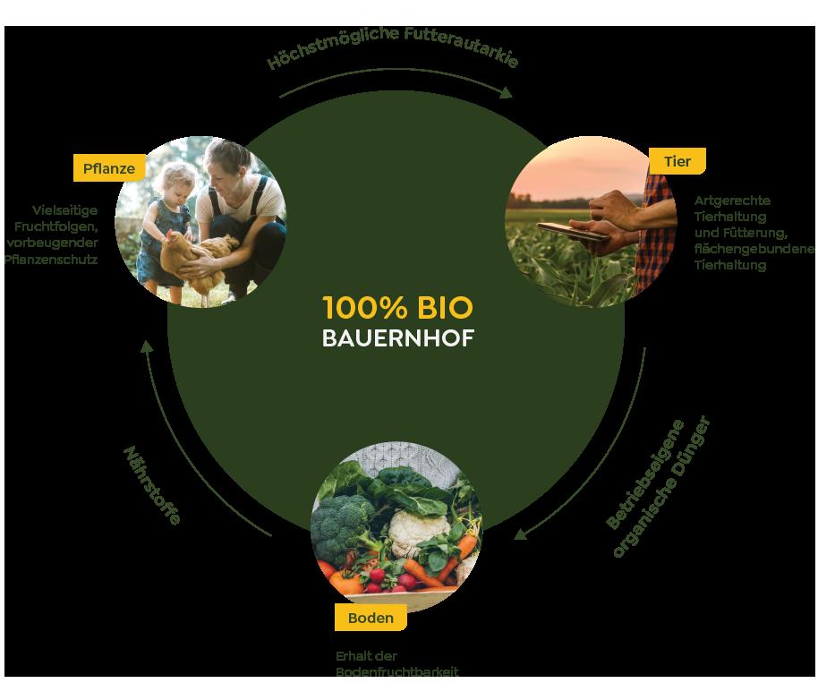 A closed nutrient and farm cycle on a 100% organically managed farm.